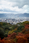 Kyoto tower and the cityscape with mountains in the background and colorful autumn trees in foreground with an eagle flying by, aerial city scenery. Higashiyama, Kyoto, Japan 2017.