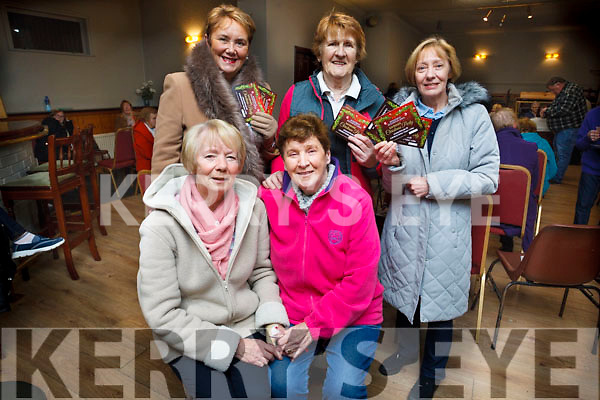 "Launching the John Mitchels Residents Active Retirement Christmas party in the John Mitchels ""Champers"" Club house on Friday night last were, Seated l to r: Francis Locke and Joan O'Mahoney. Standing L to R: Elenor carrick, Kit Ryan and Nuala O'Brien."