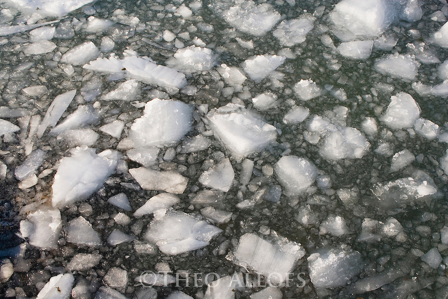 Small ice pieces floating in fiord after collapse of large iceberg, midnight, June; Disko Bay, Greenland