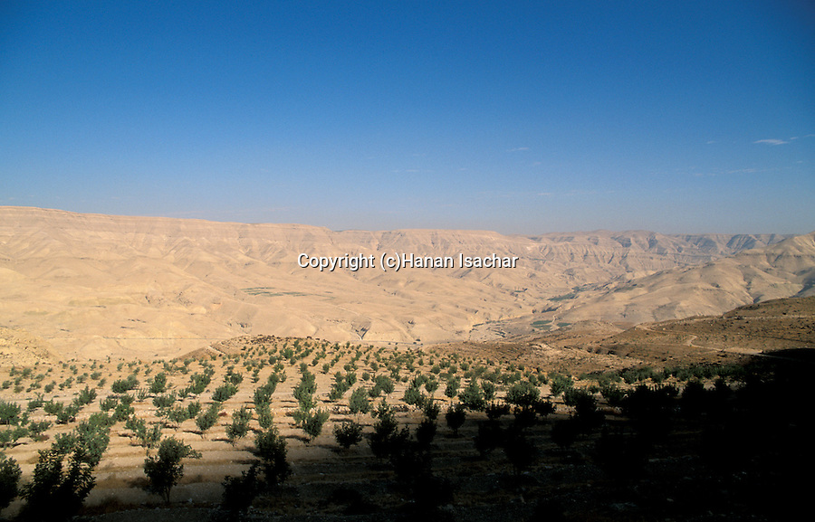 Jordan, landscape south of Madaba&#xA;<br />