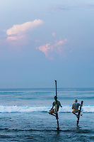 Fisherman stilt fishing at sunrise, Midigama near Weligama, South Coast, Sri Lanka, Asia. This is a photo of fishermen stilt fishing at sunrise at Midigama near Weligama on the South Coast of Sri Lanka, Asia. Stilt fishing is an old tradition in Sri Lanka. By standing on the stilts, the stilt fishermen are able to get close to the fish without disturbing them.