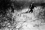 Allen Miller drags a young doe from the woods, Kalona, 2005