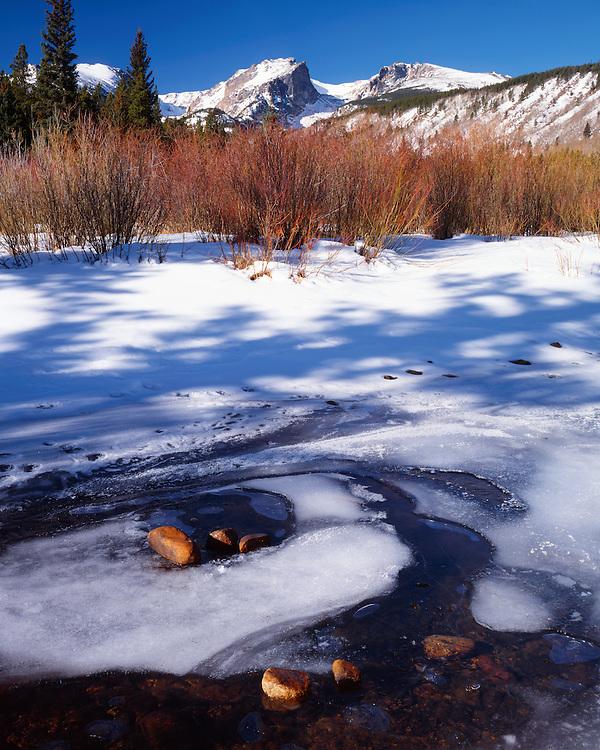 Winter morning light along Glacier Creek below Hallett peak; Rocky Mountain National Park, CO