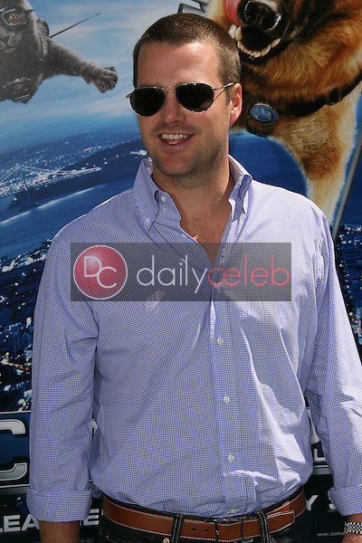 """Chris O' Donnell<br /> at the """"Cats and Dogs The Revenge Of Kitty Galore"""" World Premiere, Chinese Theater, Hollywood, CA. 07-25-10<br /> David Edwards/DailyCeleb.com 818-249-4998"""