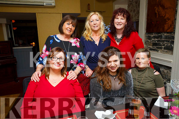 Claire Galvin, Curraheen, celebrates a birthday with friends at the Brogue Inn on Saturday Front l-r Ann Marie O'Connor, Claire Galvin, Grace Healy, Back l-r Sheila Hughs, Susan Browne and Karen Dillon