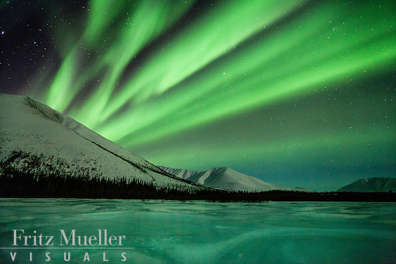 Aurora borealis (northern lights) reflected in a frozen river in the Ogilvie Mountains, North Yukon