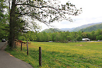 Stock photo of road passing through cades cove valley and a sloped grassland and smoky mountain hills seen on the side at a distance.