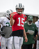 New York Jets quarterback Josh McCown (15) tells a receiver where he needs to be as he participates in a joint training camp practice with the Washington Redskins at the Washington Redskins Bon Secours Training Facility in Richmond, Virginia on Monday, August 13, 2018.<br /> Credit: Ron Sachs / CNP<br /> (RESTRICTION: NO New York or New Jersey Newspapers or newspapers within a 75 mile radius of New York City)