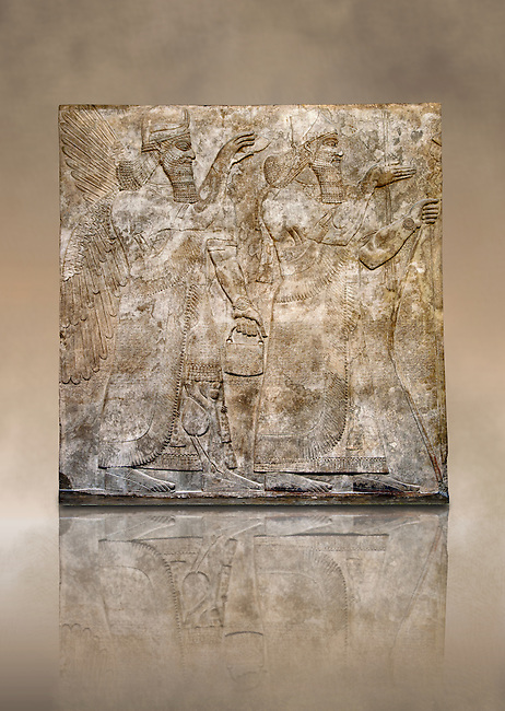Assyrian relief sculpture panel  of King Ashurnaspiral II, right, and a winged protective spirit holding a bucket of holy water in one hand and a cone in the other..  From Nimrud, Iraq,  865-860 B.C North West Palace.  British Museum Assyrian  Archaeological exhibit .