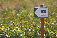 Sign for bikers in the vineyard. Beaune, Cote d'Or, Burgundy, France