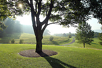 The view from the front yard at 271 Blue Springs Lane Charlottesville, VA, United States. Photo/Andrew Shurtleff