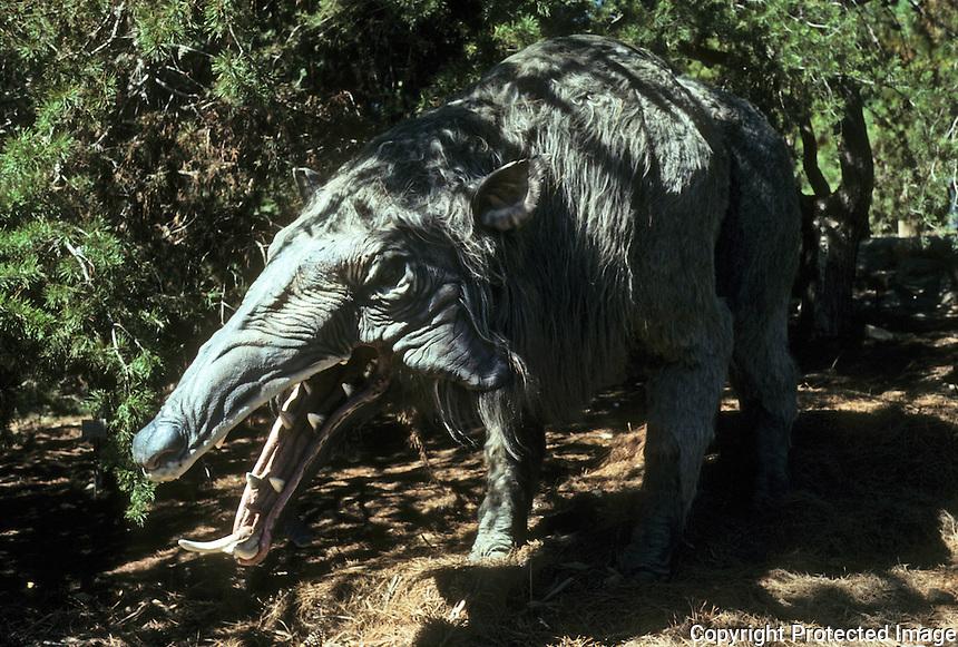 Pre-historic Animals: Megachoerus Latidens--giant carnivorous pig. Oligocene (11 million years ago). Ht., 7 ft.; 1 ton. Hunted in packs. Plains states.