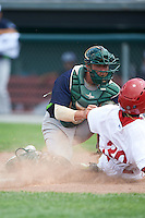 Vermont Lake Monsters catcher Brett Sunde (24) tags out Daniel Johnson (30) sliding home during a game against the Auburn Doubledays on July 13, 2016 at Falcon Park in Auburn, New York.  Auburn defeated Vermont 8-4.  (Mike Janes/Four Seam Images)