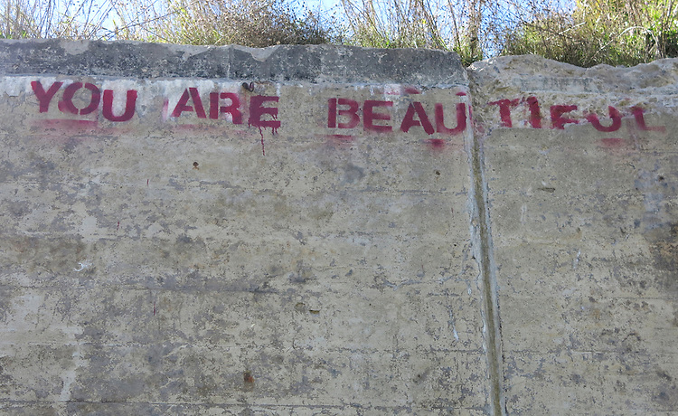 Detroit graffiti, Dequindre Cut
