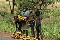 Children selling wild fruit on road
