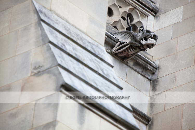 "The Washington National Cathedral in Washington, DC is home to more than 200 stone-carved gargoyles, including ""decay,"" shown here.  The purpose of the gargoyles were to both keep evil out of the cathedral and to serve as a water drainage system in torrential rain - the water pours out of the mouth of the gargoyle."
