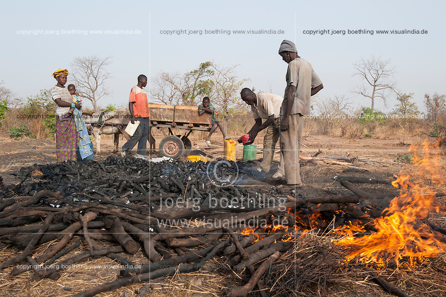 MALI, production of charcoal from bush wood, charcoal is used for cooking energy / MALI, Abholzung des Buschwaldes fuer Herstellung von Holzkohle zum Kochen