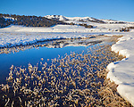 Yellowstone National Park, WY:  An icy Lamar River reflecting Speciman Ridge on a winter morning