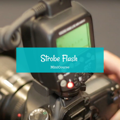 Strobe Flash Intro MiniCourse