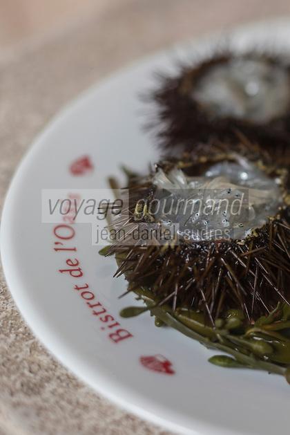 Europe/France/Provence-Alpes-Côte d'Azur/Alpes-Maritimes/Mandelieu-la-Napoule: recette de de Stéphane Raimbault, chef du Restaurant l'Oasis à Mandelieu La Napoule ::  // Europe, France, Provence-Alpes-Côte d'Azur, Alpes-Maritimes, Mandelieu-la-Napoule: Urchin with poutine or Gianchetti, recipe from Stéphane Raimbault, chef at Restaurant l'Oasis in Mandelieu La Napoule