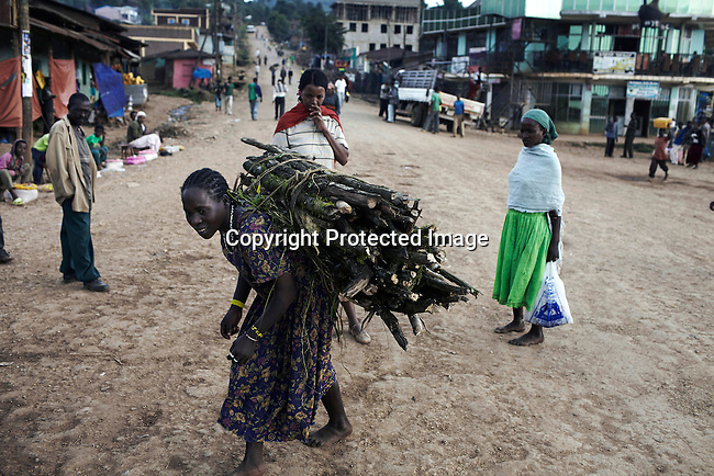 BONGA, ETHIOPIA: A minority  Manja woman sells firewood on December 3, 2012 in Bonga, Ethiopia. This Kaffa region is known for its coffee production, wild coffee grown in high altitudes. This region is the original home of the coffee plant, coffee Arabica which grows in the forest of the highlands. The red berries are the main source of income in the area. Children and cattle also drink coffee. (Photo by: Per-Anders Pettersson)