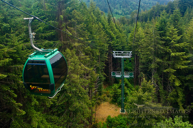The Sky Trail gondola ride through redwood forest, Trees of Mystery, Del Norte County, California