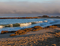 Golden morning light on sand and waves at Bean Hollow State Beach on California's coast