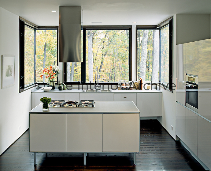 A central island with an integral hob and a neat stainless steel extractor dominates this kitchen with woodland views