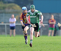 6th October 2013; Rory Fleming, Lucan Sarsfields. Dublin Junior F Hurling Championship Group A, Lucan Sarsfields v St Josephs OBC, 12th Lock, Lucan, Co Dublin. Picture credit: Tommy Grealy / Actionshots.ie