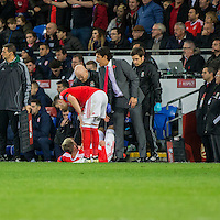 Wales manager Chris Coleman and his player Chris Gunter check on Aaron Ramsey during the FIFA World Cup Qualifying match between Wales and Serbia at the Cardiff City Stadium, Cardiff, Wales on 12 November 2016. Photo by Mark  Hawkins.