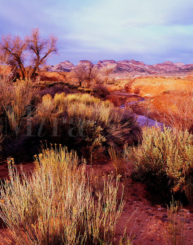 Pleasant Creek and Capitol Reef Henry Mountain Resource Area Utah