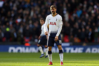 Fernando Llorente of Tottenham Hotspur during Tottenham Hotspur vs Newcastle United, Premier League Football at Wembley Stadium on 2nd February 2019