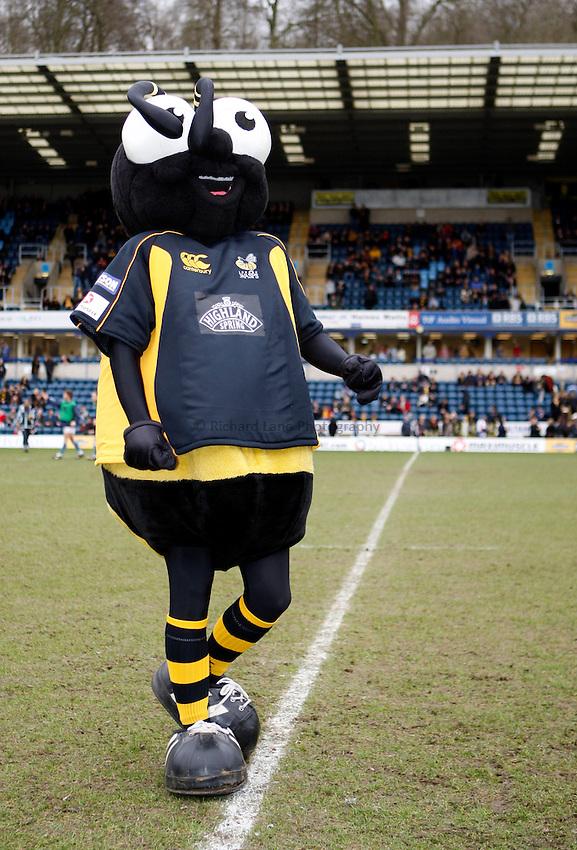 Photo: Richard Lane/Richard Lane Photography. .London Wasps v Bristol Rugby. Guinness Premiership. 23/02/3008. Wasps mascot, Sting.
