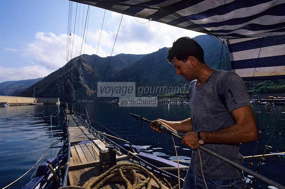 Europe/Italie/Calabre/Baganara : Pêche à l'espadon sur le Nuova Carmela avec Giuseppe Patamia qui vérifie les harpons
