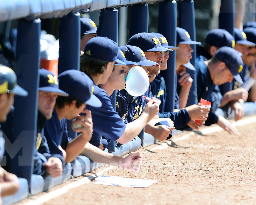 Michigan men's baseball loses 10-8 to Michigan State University in 13 innings at UM's Wilpon Baseball Complex, Easter Sunday, April 8, 2012.