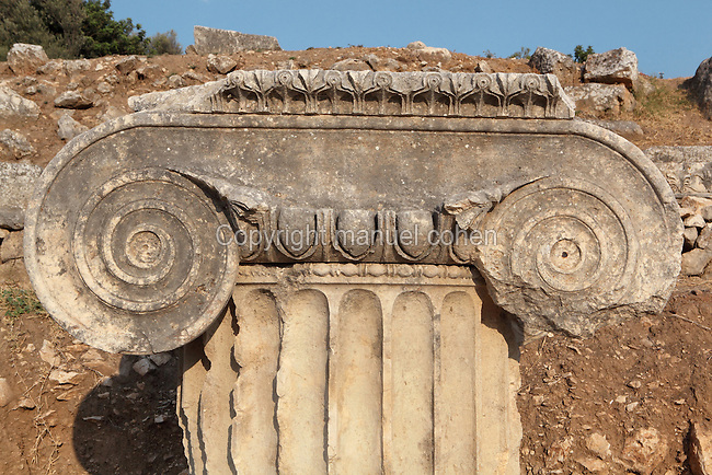 Ionic capital on a fluted column from the Temple of Apollo, built 4th century BC, Letoon, near Xanthos, Antalya, Turkey. The Letoon or Sanctuary of Leto was the sacred cult centre of Lycia, its most important sanctuary, and was dedicated to the 3 national deities of Lycia, Leto and her twin children Apollo and Artemis. Leto was also worshipped as a family deity and as the guardian of the tomb. The site is 10km South of the ancient city of Xanthos in Lycia, near the modern-day village of Kumluova, Fethiye. Founded in the 6th century BC, the Greek site also flourished throughout Roman times, and a church was built here in the Christian era. The site was abandoned in the 7th century AD. Picture by Manuel Cohen