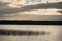 Sunrise at Lake Mahinapua, West Coast, South Westland, South Island, New Zealand, NZ