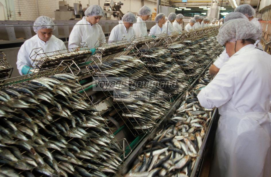 """Europe/France/Bretagne/29/Finistère/Dournenez: Conserverie de sardines """"Connétable"""" étêtage des sardines"""