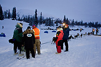 Matt Hayashida arrives in the early morning at the Finger Lake checkpoint during Iditarod 2008