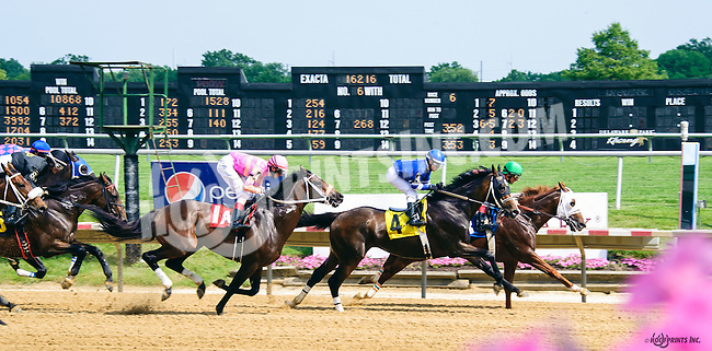 No Distortion winning at Delaware Park on 6/11/16