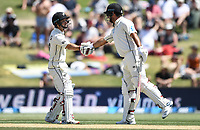 23rd November 2019; Mt Maunganui, New Zealand;  BJ Watling 50 not out congratulated by Colin de Grandhomme during play on Day 3, 1st Test match between New Zealand versus England. International Cricket at Bay Oval, Mt Maunganui, New Zealand.  - Editorial Use