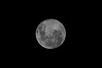 SÃO PAULO, SP, 09.03.2020 - LUA-SP - Super Lua vista na região central de São Paulo, nesta segunda-feira, 9. (Foto Charles Sholl/Brazil Photo Press/Folhapress)