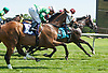 Circle of Light #6 winning in a dead heat with American Cotton #9 at Delaware Park on 6/10/17