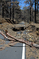 Storm damaged broken road in forest September 2006, El Hierro, Canary Islands,Spain.