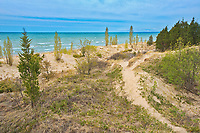 Sand dunes along Lake Huron<br />