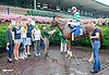 Awesome Ghost winning at Delaware Park on 8/11/15