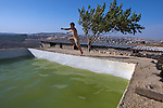 A Palestinian boy leaps into a swimming pool in the village of Wad Rahal overlooking the  town of Artas near Bethlehem on 07/06/2010. The pool is located close to the future site of Israel's controversial West Bank barrier & there is a demolition order from the Israeli Civil Administration Pending against it & the adjacent house.