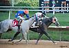 Mr. Beer Goggles winning at Delaware Park on 8/4/16