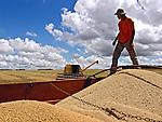 Colheita mecanizada da soja em fazenda no município de Navirai. Mato Grosso do Sul. 2010. Foto de Alf Ribeiro.