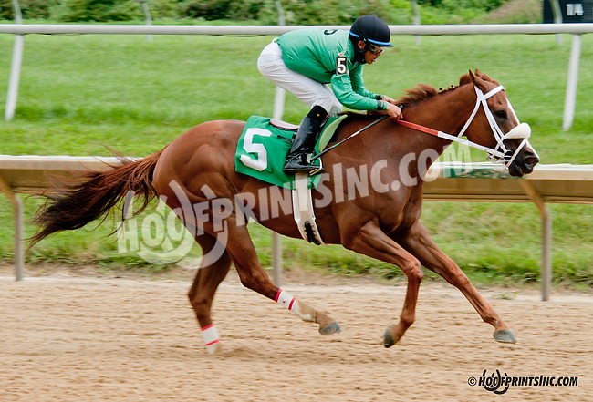 Gangsterontherun winning at Delaware Park on 7/25/13